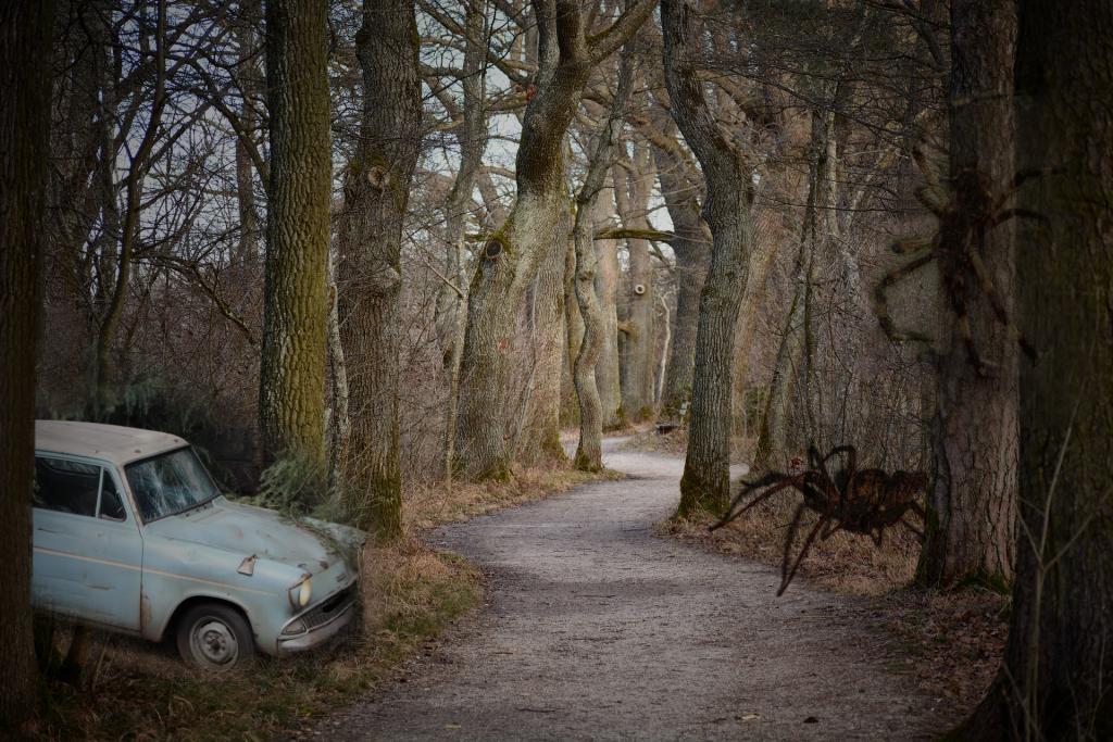 ...Spaziergänge durch verbotene Wälder würden zu Abenteuern werden...