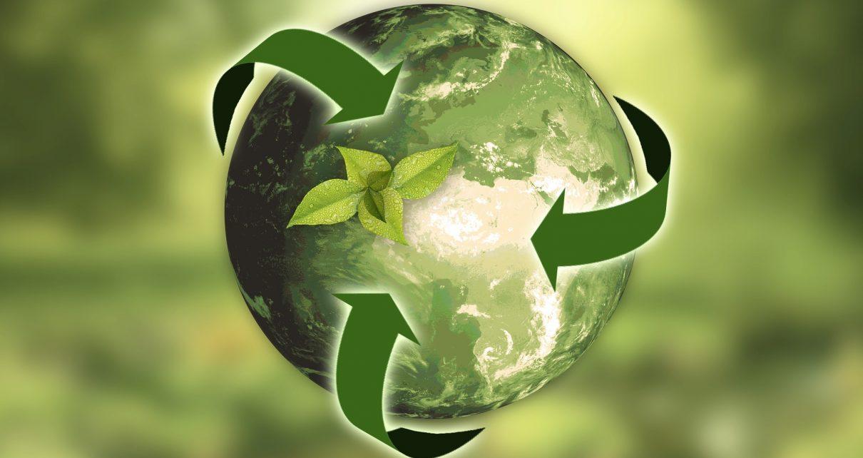https://pixabay.com/de/natur-erde-nachhaltigkeit-blatt-3294632/