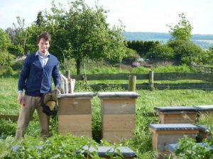 Honigbienen tragen zu einem vielfältigen und intakten Ökosystem bei. Copyright: Simon Schulze-Musiol