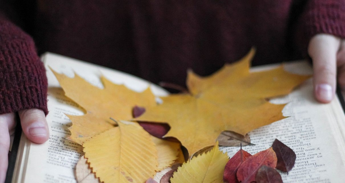 autumn-4552277_1920